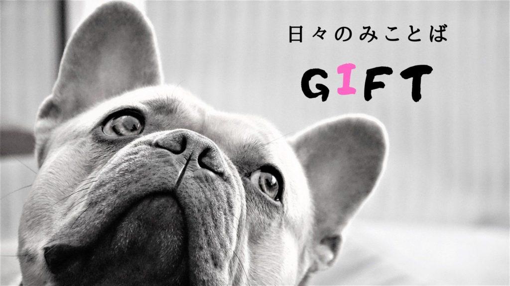 Giftの写真