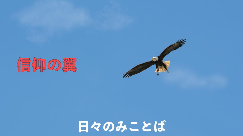 信仰の翼の写真