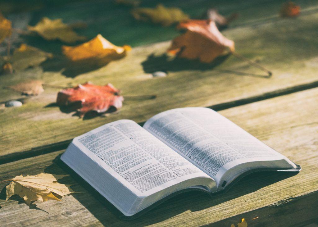 聖書の読み方の写真