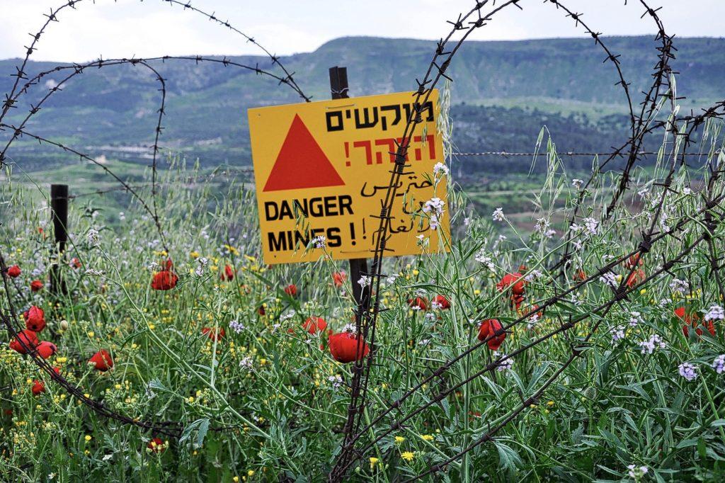 地雷系クリスチャンの写真